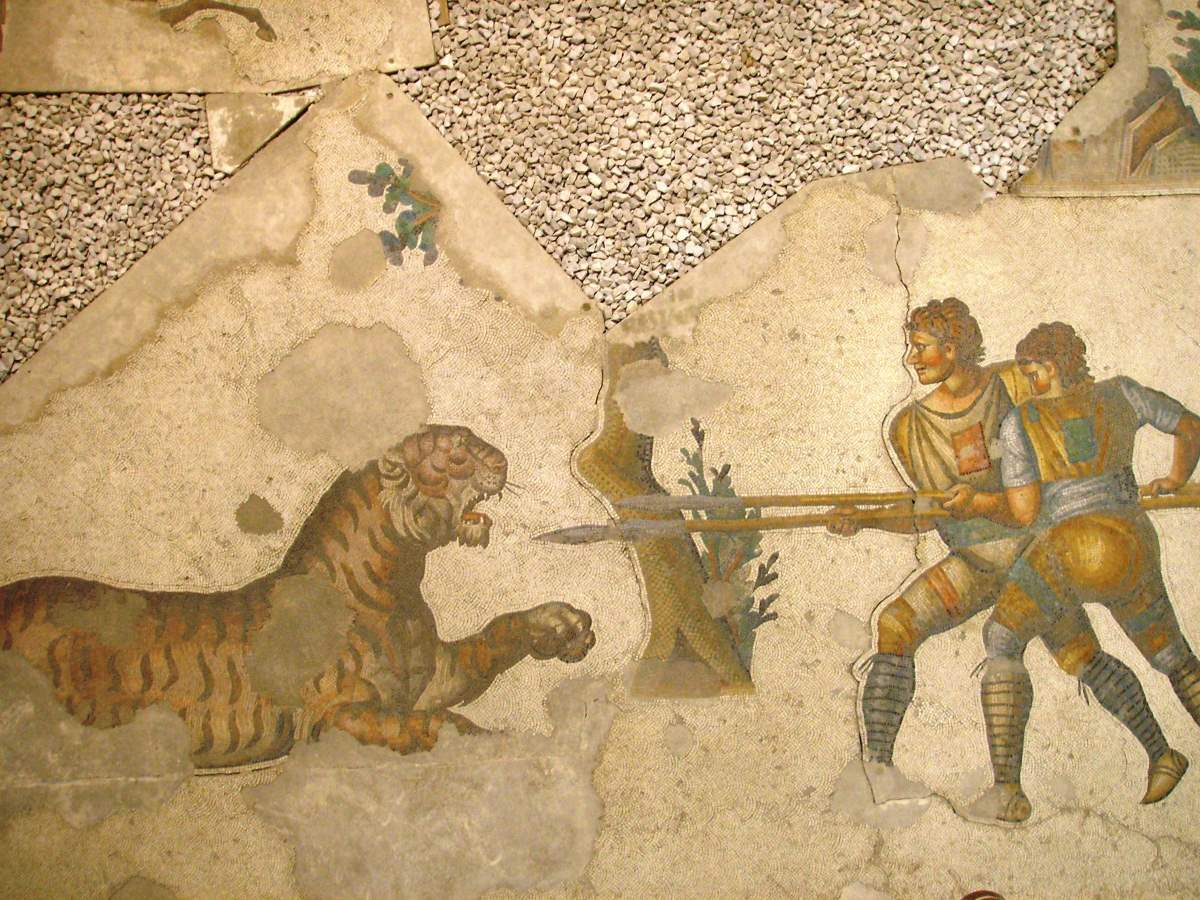 Two Roman venatores fighting a tiger (mosaic)