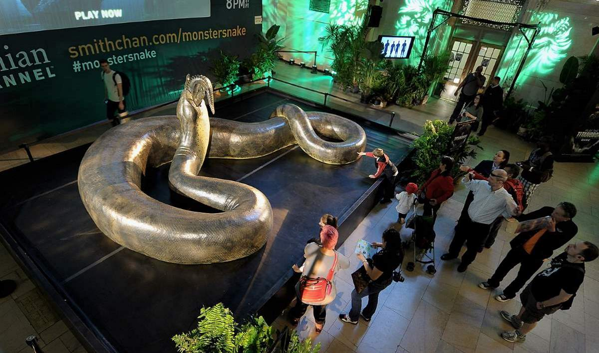 Largest snake ever lived: Titanoboa