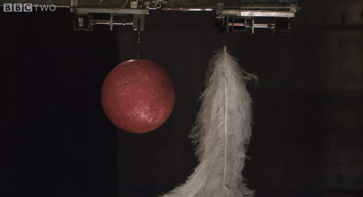 A Bowling Ball and Feather Falling in a Vacuum