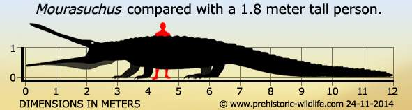 Mourasuchus size comparison