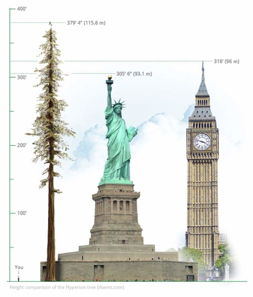 Height comparison of Hyperion
