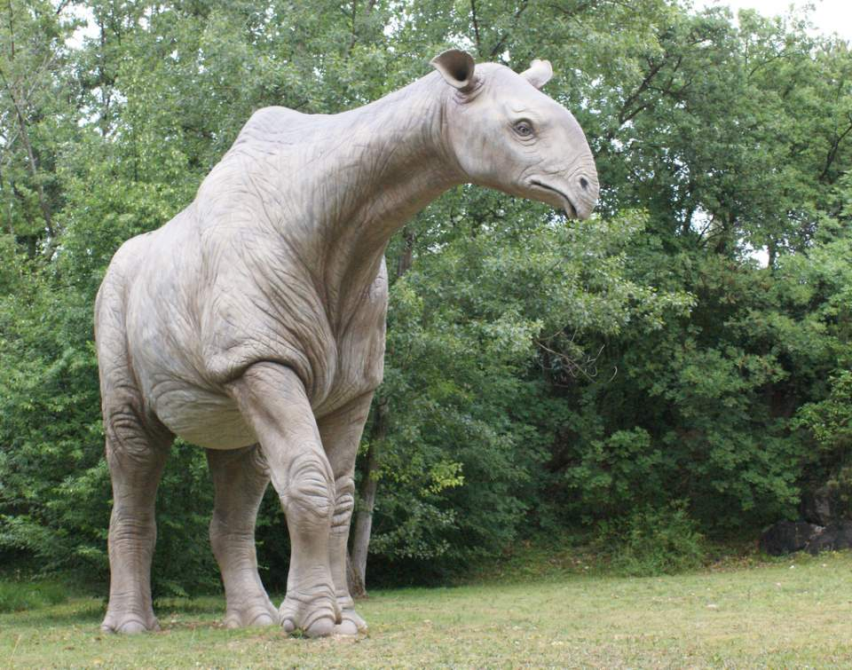 Indricotherium model at the Parco Natura Viva, Pastrengo, Veneto, Italy