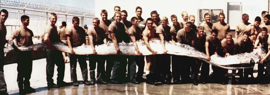 A Giant Oarfish (1996)