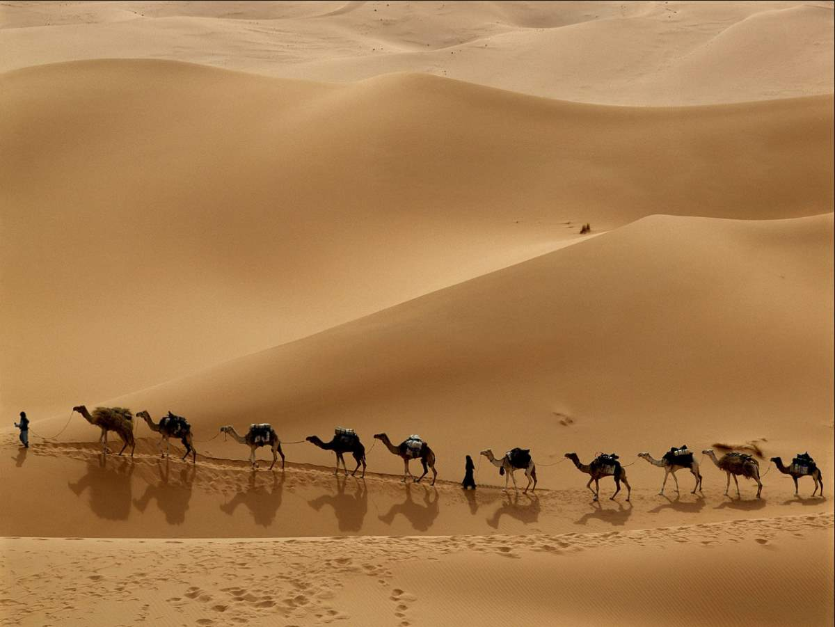 Amazing facts about Earth: A Caravan in Libyan Desert