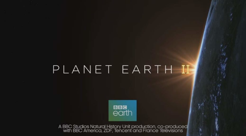 "In 2006, PLanet Earth, the British television series produced by the BBC Natural History Unit ""has changed our view of the world"". It was the first nature documentary series filmed in high definition. It took five years in the making and it was the most expensive nature documentary series ever commissioned by the BBC. Now, ten years later, in February 2016, the BBC announced a six-part sequel had been commissioned, titled Planet Earth II. On October 2016, BBC released the new series' trailer."