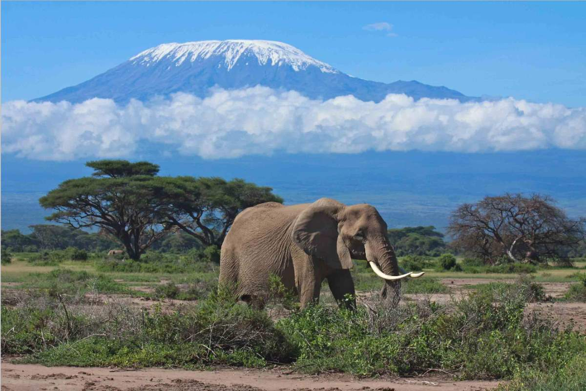 Places to See Before They Have Vanished: Mount Kilimanjaro