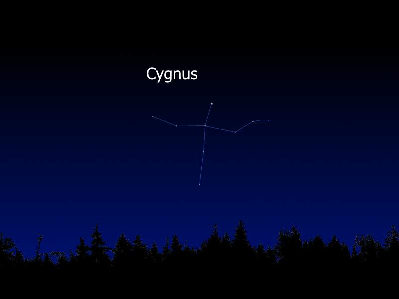 Cygnus in the Earth's sky
