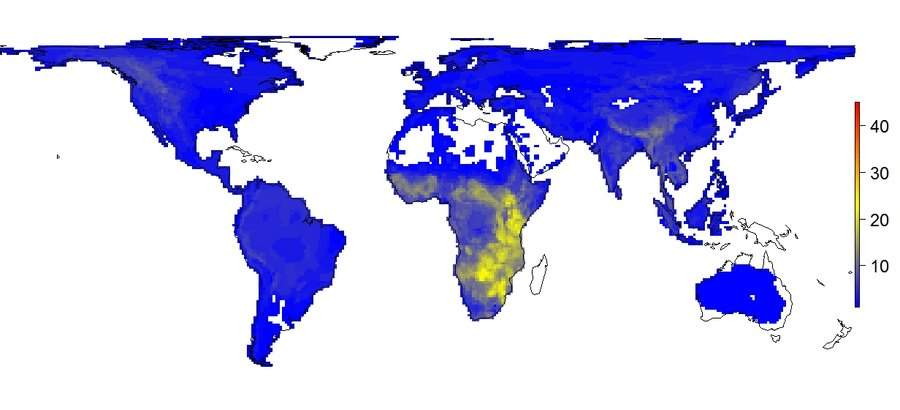 World - current animal diversity
