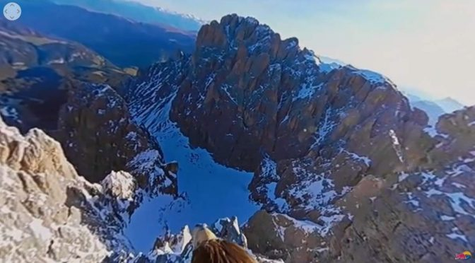 Dolomites, from an Eagle's point of view