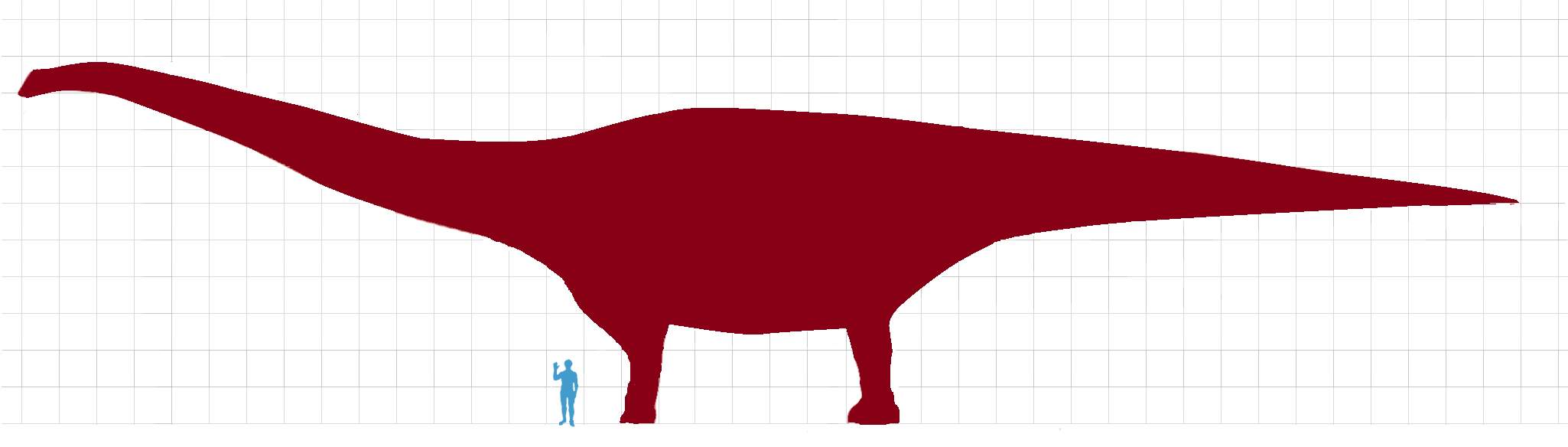 Patagotitan mayorum vs human size comparison