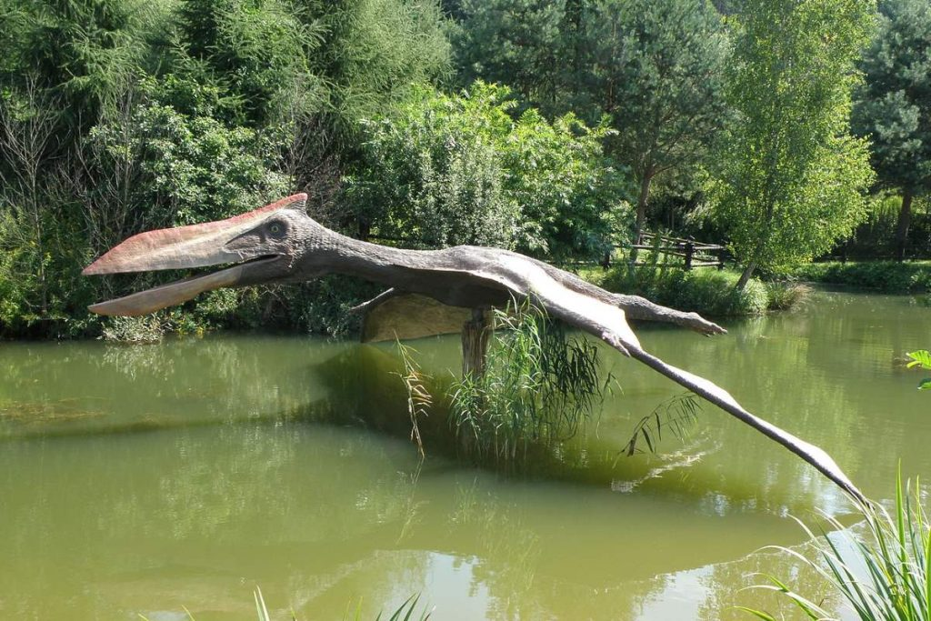 The largest flying animal ever lived - A Quetzalcoatlus reconstruction at JuraPark Bałtów