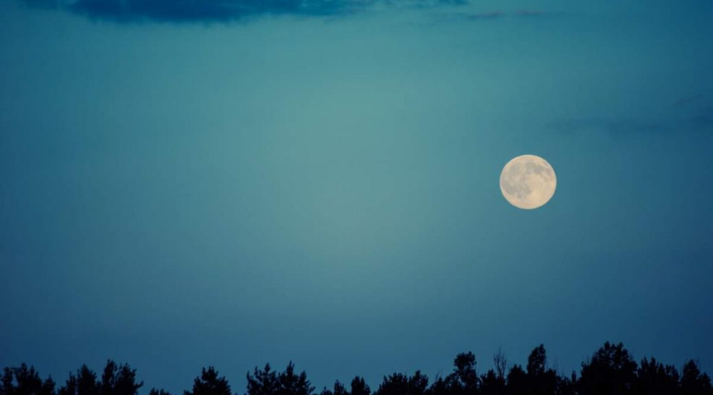 Why do we see only one side of the moon: Moon in the sky over trees