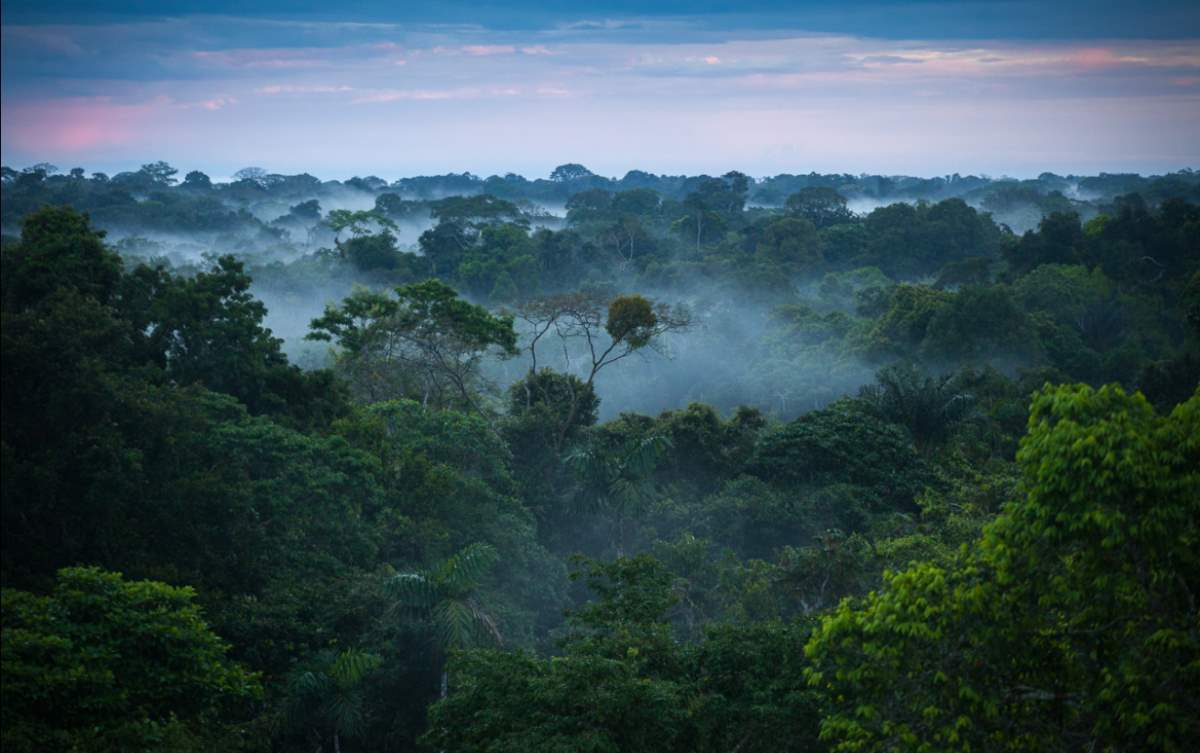 A small part of the Amazon between Brazil and Peru
