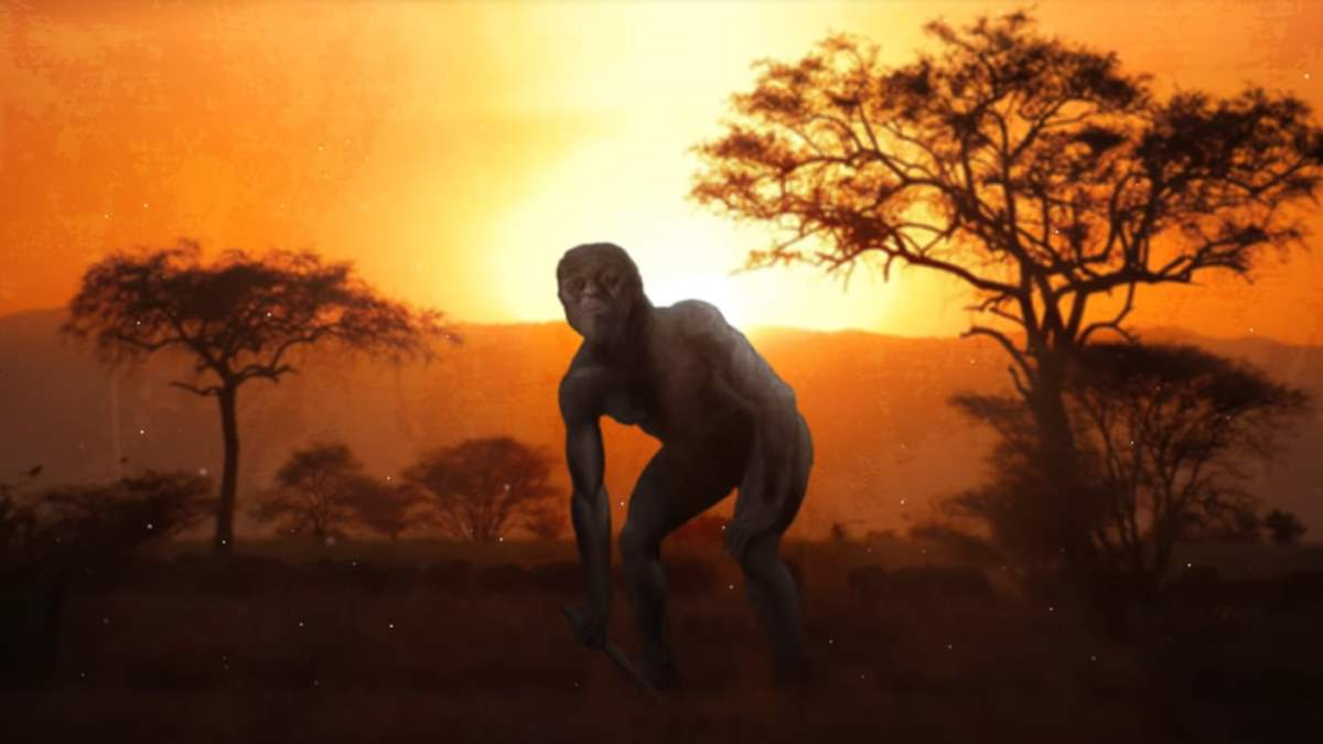 Evolution of bipedalism (walking on two legs)