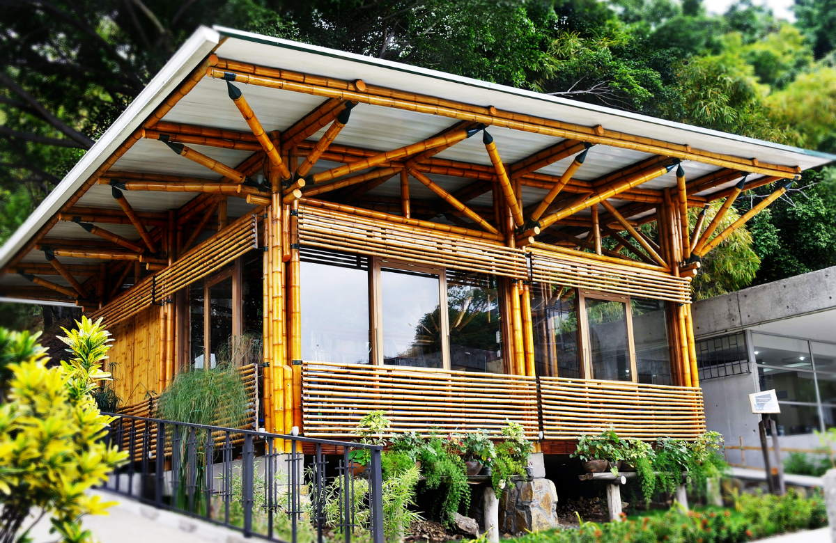 Sustainable Building: Alternatives to Concrete